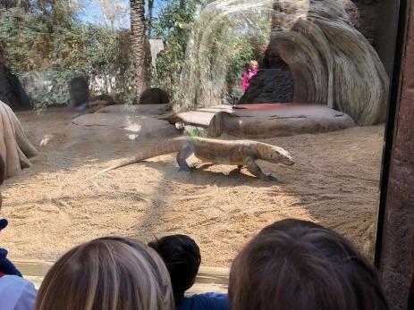 segon-zoo-13
