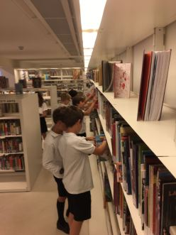 sise-biblioteca-2